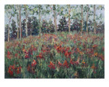 Minnesota Wildflowers Giclee Print by Nadine Rippelmeyer