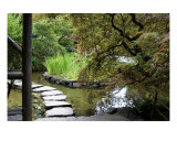 Japanese Garden Stone Path Photographic Print by William Luo