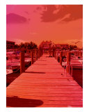 Captiva Red Photographic Print by Florene Welebny