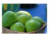 Limes Photographic Print by Tamara Shurling