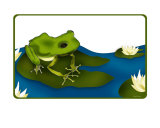 Pretty Froggie Photographic Print by Helena Baggs