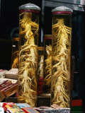 Bottled Ginseng Root at Namdaemun Market, Seoul, South Korea Fotografie-Druck von Richard I&#39;Anson