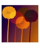 Dandelion Clocks Fotodruck von Peter Valente