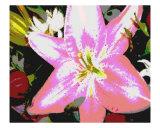 Flowers VI Photographic Print by dana lee