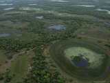 Aerial View of the Wetlands of the Pantanal Region Photographic Print by Nicole Duplaix