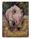 Rhino Photographic Print by Agnieszka Grecka