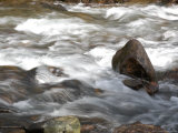 Whitewater Rushes Over Rocks in a River in Montana Photographic Print by Stacy Gold