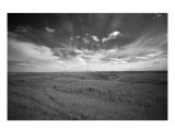 Prairie Landscape Photographic Print by Mary Lane