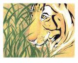Tiger Traveler Photographic Print by Jennifer Skalecke