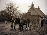 The Farmer's Wife Brings the Ploughman a Well Earned Cup of Tea, 1935 Photographic Print