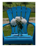 Sitting Back In My Blue Adirondack - White Peonies Photographic Print by Darlene Navor