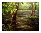 Summer Creek Photographic Print by Monica Vanzant