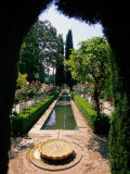 Garden and Fountain, Granada, Spain Photographic Print by Kindra Clineff