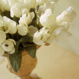 White Tulips in Vase Photographic Print by Fabrizio Cacciatore