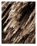 0004B Abstract Wood Photography Photographic Print by V Lausen