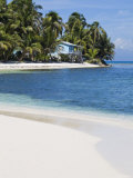 Belize, Ranguana Caye, Palm Trees and Beach Photographic Print by Jane Sweeney