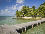 Belize, Tobaco Caye, Pier and Beach Photographic Print by Jane Sweeney
