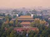 The Forbidden City, Elevated View, Beijing, China Photographic Print by Michele Falzone