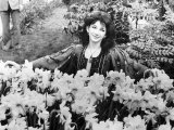 Kate Bush in a Garden Full of Daffodils and Trees Fotografická reprodukce