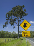 Australia, Queensland, Fraser Coast, Maryborough, Koala Crossing Sign on the Bruce Highway Photographic Print by Walter Bibikow