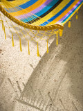 Hammock on Beach, Caye Caulker, Belize Photographic Print by Russell Young