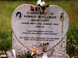 Rock Star Billy Fury's Grave in Mill Hill Cemetry in Overgrown Field Fotografisk tryk