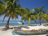 Belize, Laughing Bird Caye, Canoe Filled with Coconut Husks on Beach Photographic Print by Jane Sweeney