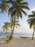 Panama, Comarca de Kuna Yala, San Blas Islands, Kuanidup Grande, Tropical Beach Photographic Print by Jane Sweeney