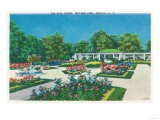 Buffalo, New York - Delaware Park Rose Garden View Prints
