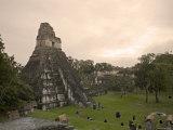 Tikal Pyramid Ruins, Guatemala Photographic Print by Michele Falzone