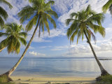 Panama, Bocas Del Toro Province, Carenero Island, Palm Trees and Beach Fotografiskt tryck av Jane Sweeney