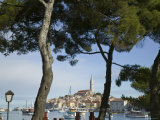 Croatia, Istria, Rovinj, Harbour and Cathedral of St. Euphemia Photographic Print by Walter Bibikow