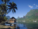 Cook's Bay, Moorea, French Polynesia, South Pacific, Tahiti Fotodruck von Steve Vidler
