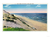 Cape Cod, Massachusetts - View of Sand Dunes and the Beach Art by  Lantern Press