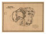 Hawaii - Panoramic Kauai Island Map Prints