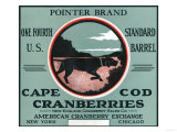 Cape Cod, Massachusetts - Pointer Brand Cranberry Label Art by  Lantern Press