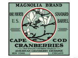 Cape Cod, Massachusetts - Magnolia Brand Cranberry Label Prints by  Lantern Press