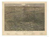 Colorado - Panoramic Map of Denver No. 2 Prints