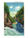 Ithaca, New York - View of Fall Creek Gorge Art