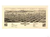 Colorado - Panoramic Map of Gunnison Prints