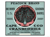 Cape Cod, Massachusetts - Peacock Brand Cranberry Label Prints