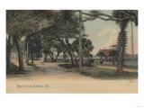 Daytona, Florida - View of Beach Street Art by  Lantern Press