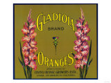 Gladiola Brand Citrus Crate Label - Covina, CA Prints by  Lantern Press