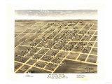 Homer, Illinois - Panoramic Map Art