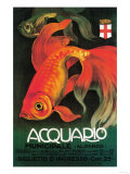 Italy - Aquarium & Municipal Park Promotional Poster Affiches par  Lantern Press