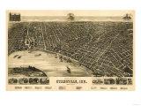 Evansville, Indiana - Panoramic Map Prints by  Lantern Press