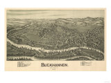 Buckhannon, West Virginia - Panoramic Map Posters