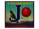 Delta, Colorado - Joslyn Apple Crate Label Art by  Lantern Press