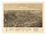 Honey Grove, Texas - Panoramic Map Art by  Lantern Press