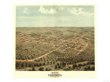 California, Missouri - Panoramic Map Prints